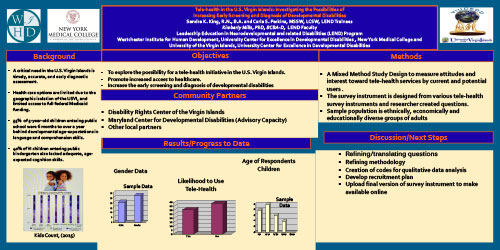 Scientific Poster - Page 3
